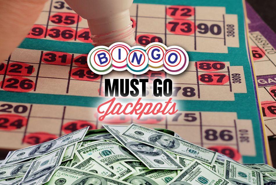 Bingo Go